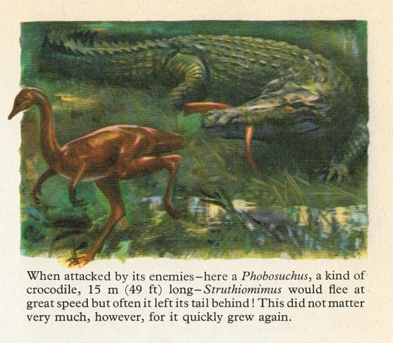 Paleofails Whut