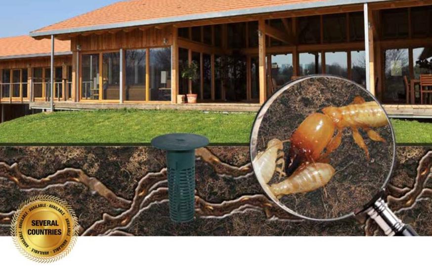 Termigard cebos contra termitas Castellón