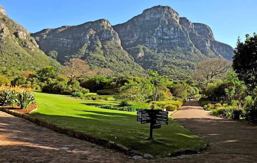 Jardines de Kirstenbosch - Ciudad del Cabo