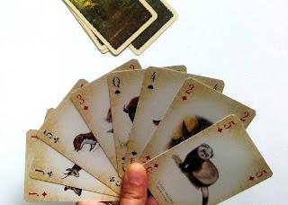http://mamadoszescianu.blogspot.com/2017/06/dlaczego-warto-grac-w-karty-konkurs.html