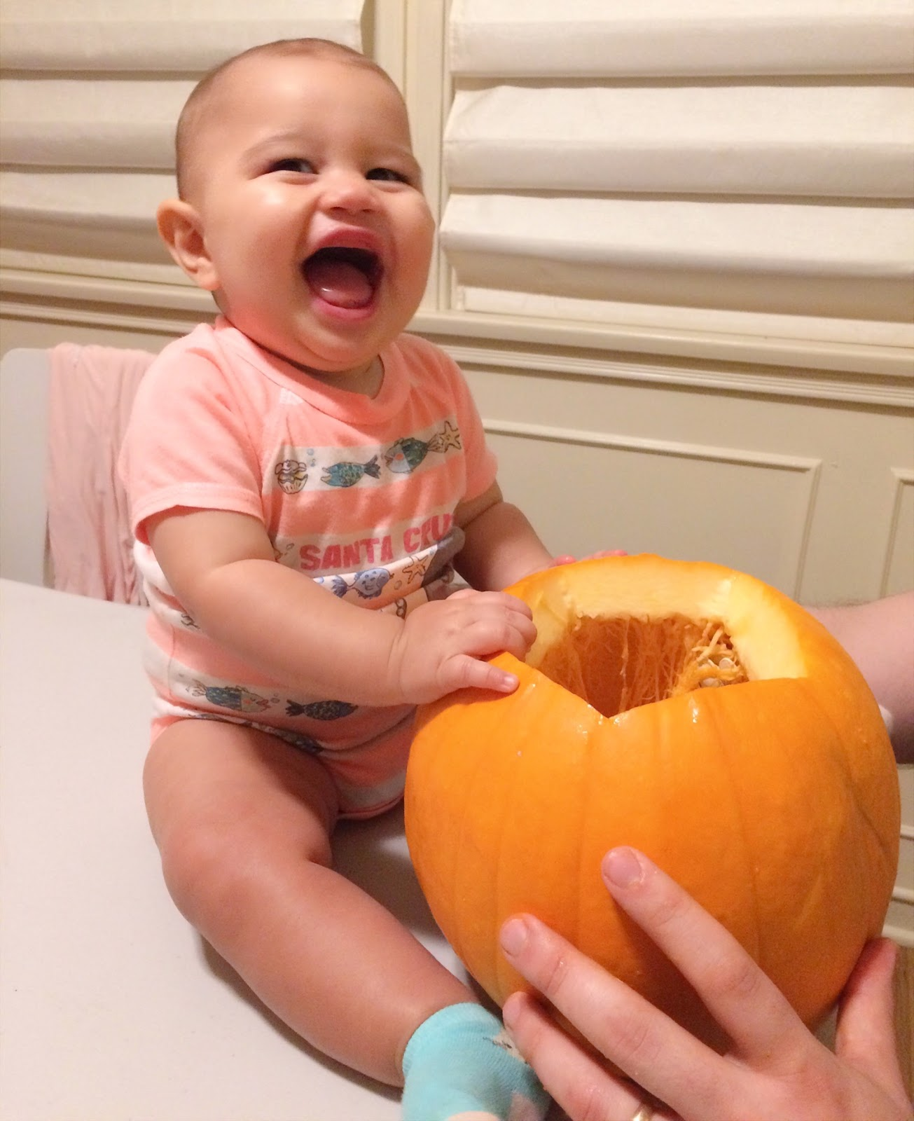 paper pastries: baby's first halloween