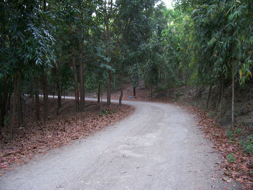 10 Best Places For Jogging In Cebu City