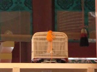 鶴岡八幡宮:鈴虫
