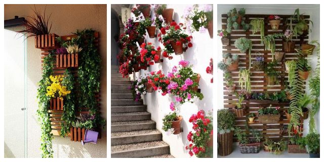 HANGING WALL PLANTERS IDEAS