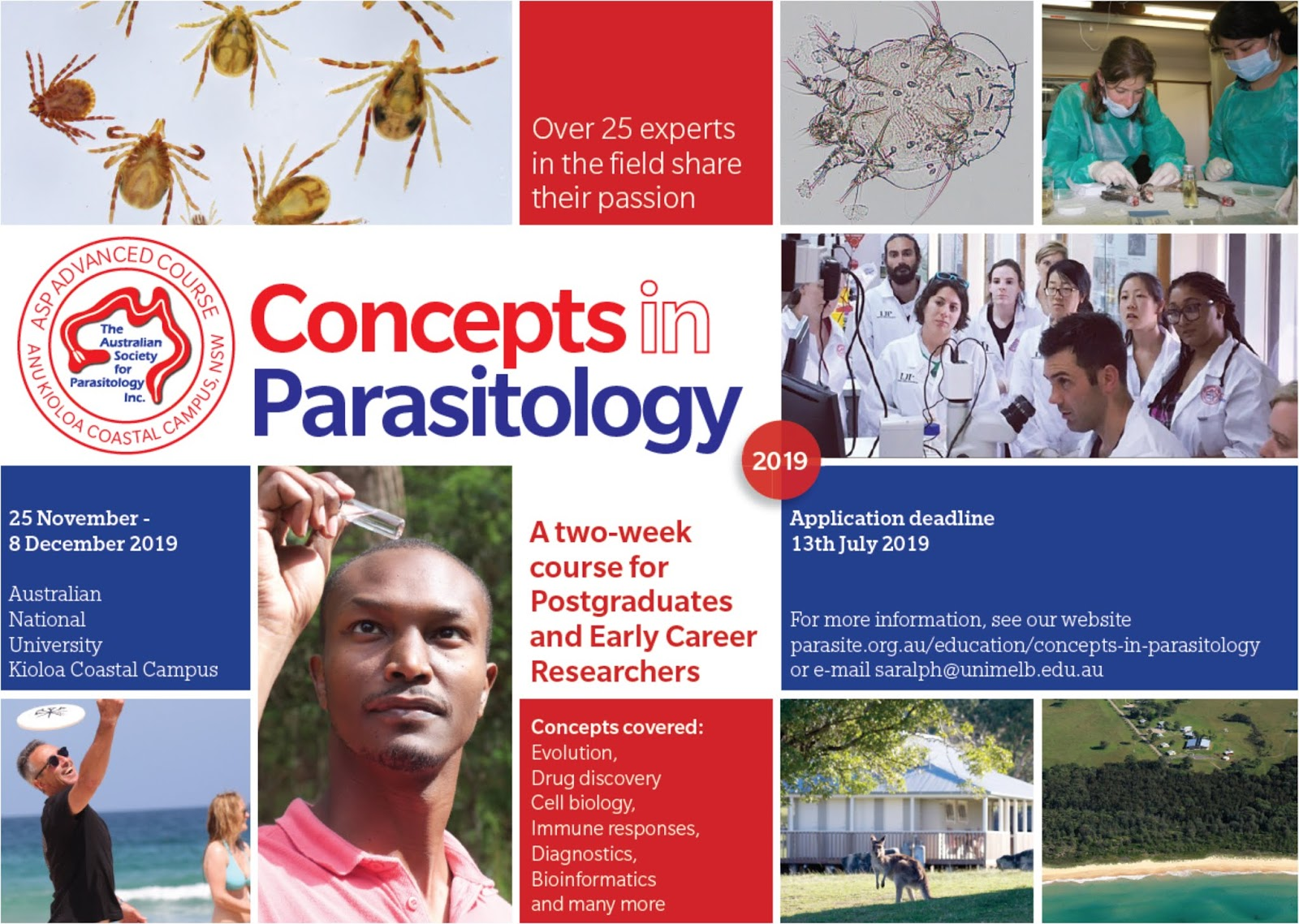 Blastocystis Parasite Blog