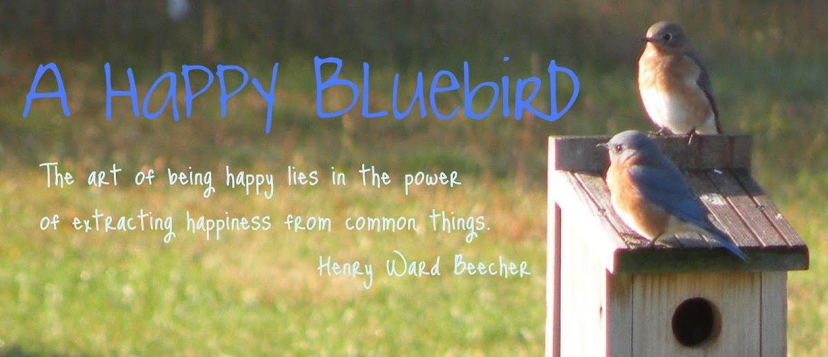 A Happy Bluebird