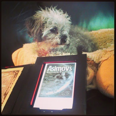 Murchie lies atop a fuzzy, sheep-shaped pillow with an e-reader propped in front of him. His head is twisted slightly to our right as he looks at something outside the frame. The e-reader displays a black and white cover for Asimov's Science Fiction, showing a pale woman removing a featureless mask as she hovers in space.