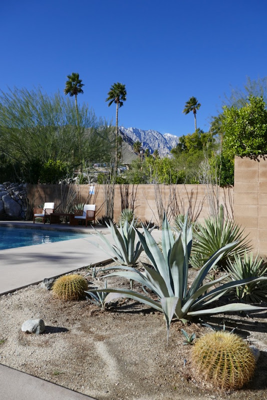 Snow-capped mountains Palm Springs Modernism Week
