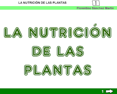 http://www.ceiploreto.es/sugerencias/cplosangeles.juntaextremadura.net/web/curso_3/naturales_3/nutricion_plantas_3/nutricion_plantas_3.html