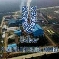 Recruitment Management Trainee Unilever Medan Batas Waktu 27 Juli 2018