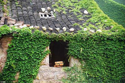 El pueblo fantasma más verde del mundo