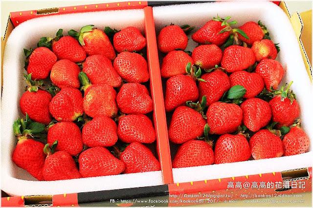 【包裝食品】好市多。本產苗栗大湖草莓《豐香草莓》 @高高的花攝日記 - nidBox親子盒子