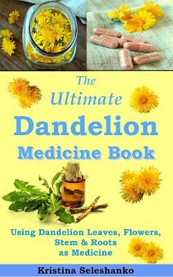 herbal medicine dandelion
