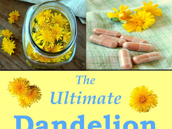 The Ultimate Dandelion Medicine Book is here!
