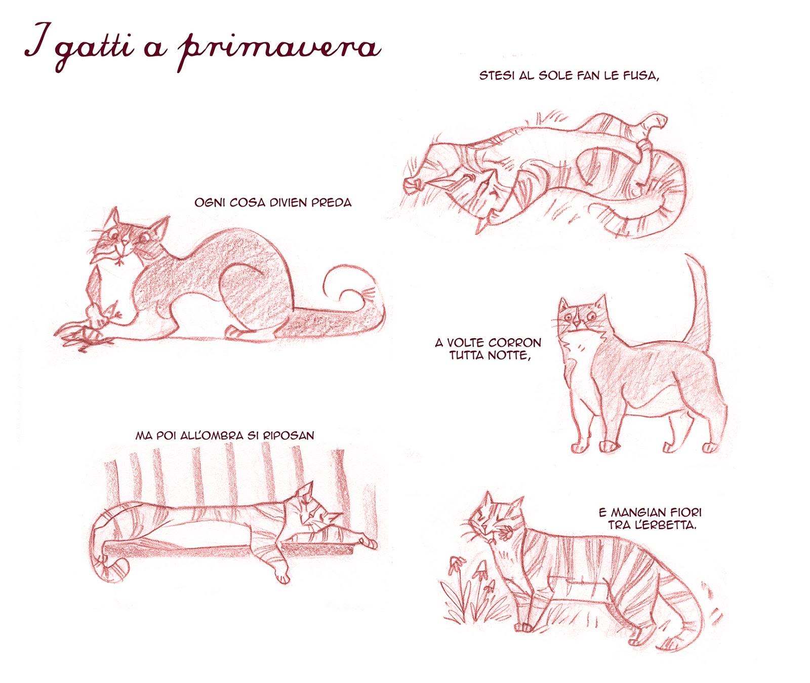 Disegni Da Colorare Cani E Gatti