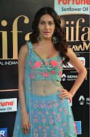 Amyra Dastur in Flower Print Choli Transparent Chunni at IIFA Utsavam Awards 20.JPG