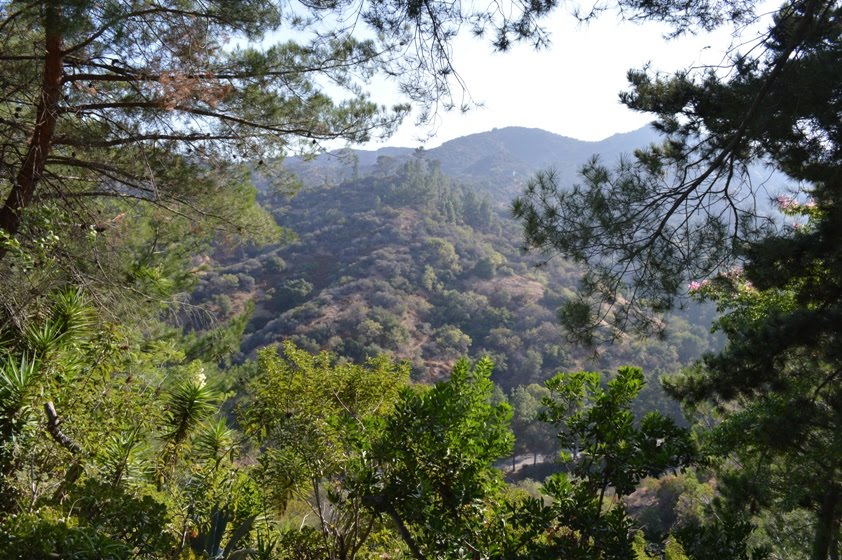 My Own 100 Hikes: Hike 2012.065 -- Mineral Wells to Mt. Lee