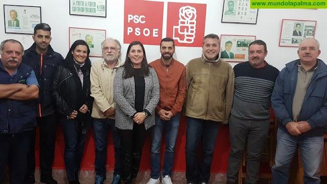 Ejecutiva Local PSOE Villa de Mazo