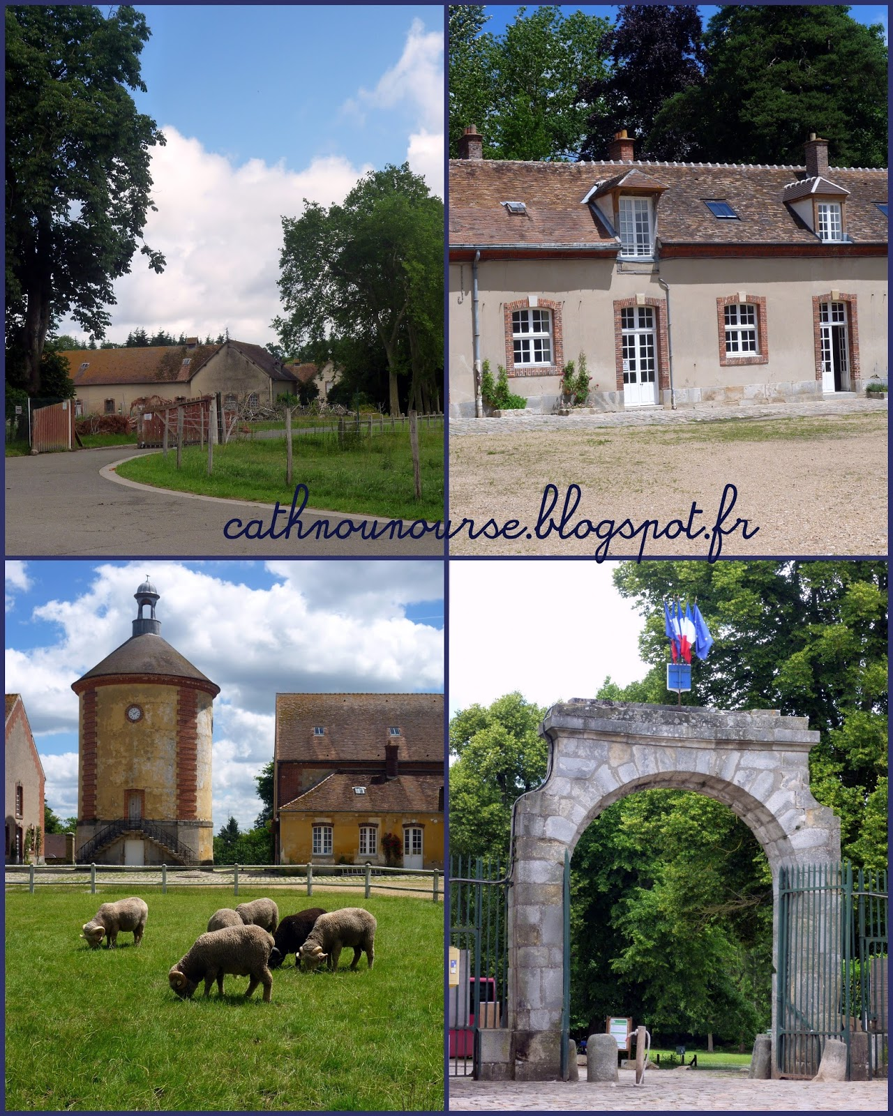Le blog de cathnounourse visite la bergerie nationale for Visite de rambouillet