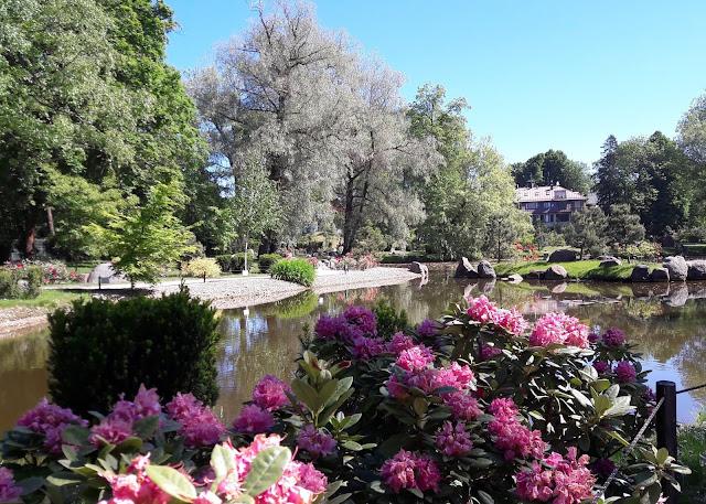 Kadriorgin Palatsin japanilainen puutarha