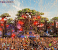 Tomorrowland Festival - How To Celebrate,History and Everything in Details - FestivalsArena.com