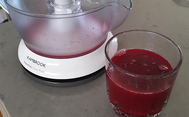 Picture of citrus juicer next to glass of blood orange juice
