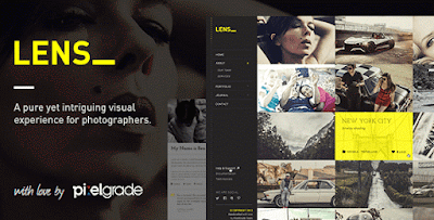 Download Free LESN wordpress theme