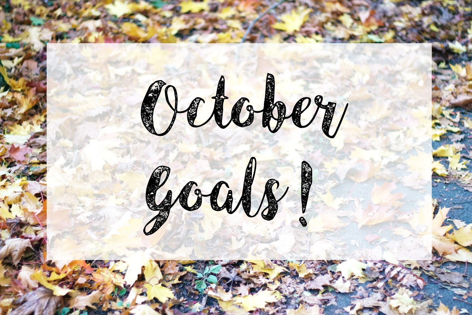 October Goals, Leaves, Belper Derbyshire, Katie Writes,