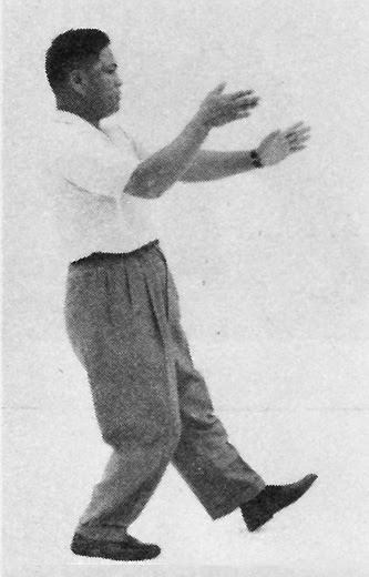 Tai Chi Chuan (Square Form) 11. Brush Knee Twist Step