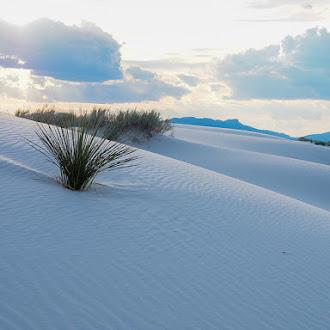 White Sands στο Νέο Μεξικό (Εικόνες)