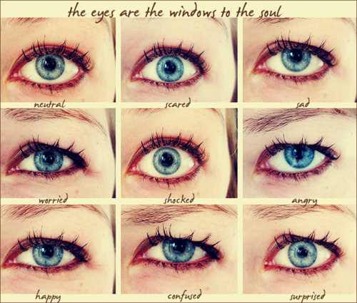Windows To My Soul: The Eyes Are The Windows To The Soul
