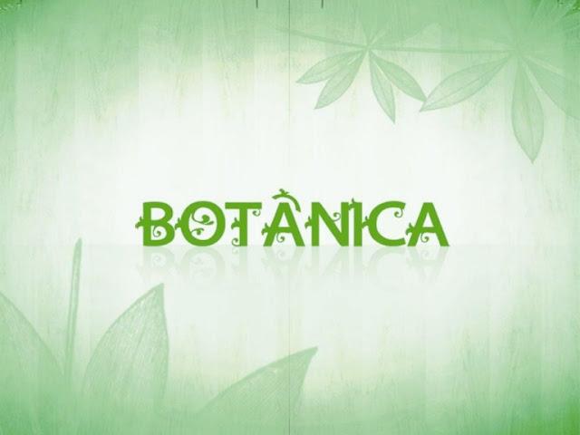 Saiba mais sobre a Botânica na Biologia