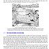 GIÁO TRÌNH - Thủy năng và điều tiết dòng chảy - Nguyễn Thượng Bằng