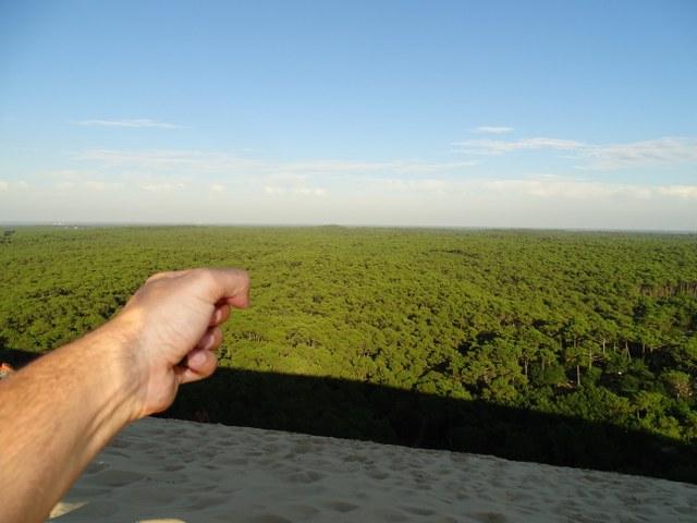 star wars duna pilat bosque Yavin francia arena sol verde