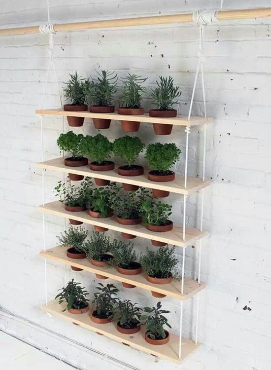 horta vertical, jardim vertical, faça você mesmo, diy, do it yourself, decor, decoração, home design, a casa eh sua