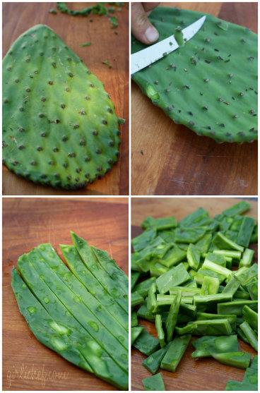 nopal - cactus paddle