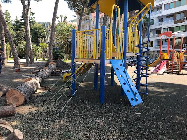 Ventimiglia, un grosso pino si abbatte sulle panchine dei giardini pubblici