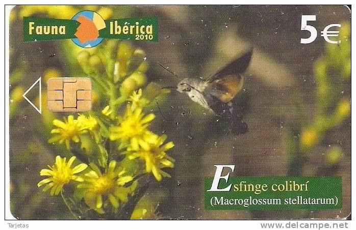 Tarjeta telefónica Esfinge colibrí (Macroglossum stellatarum)