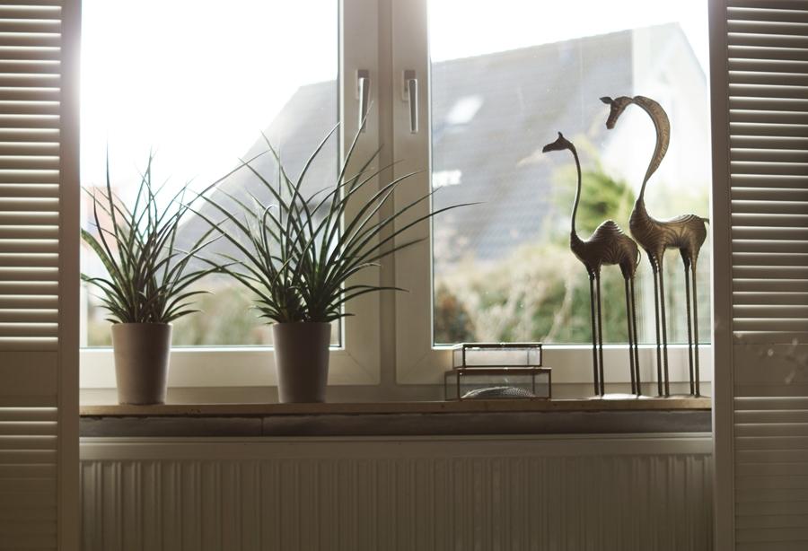Blog + Fotografie by it's me! - Fenster mit Fensterläden und Deko