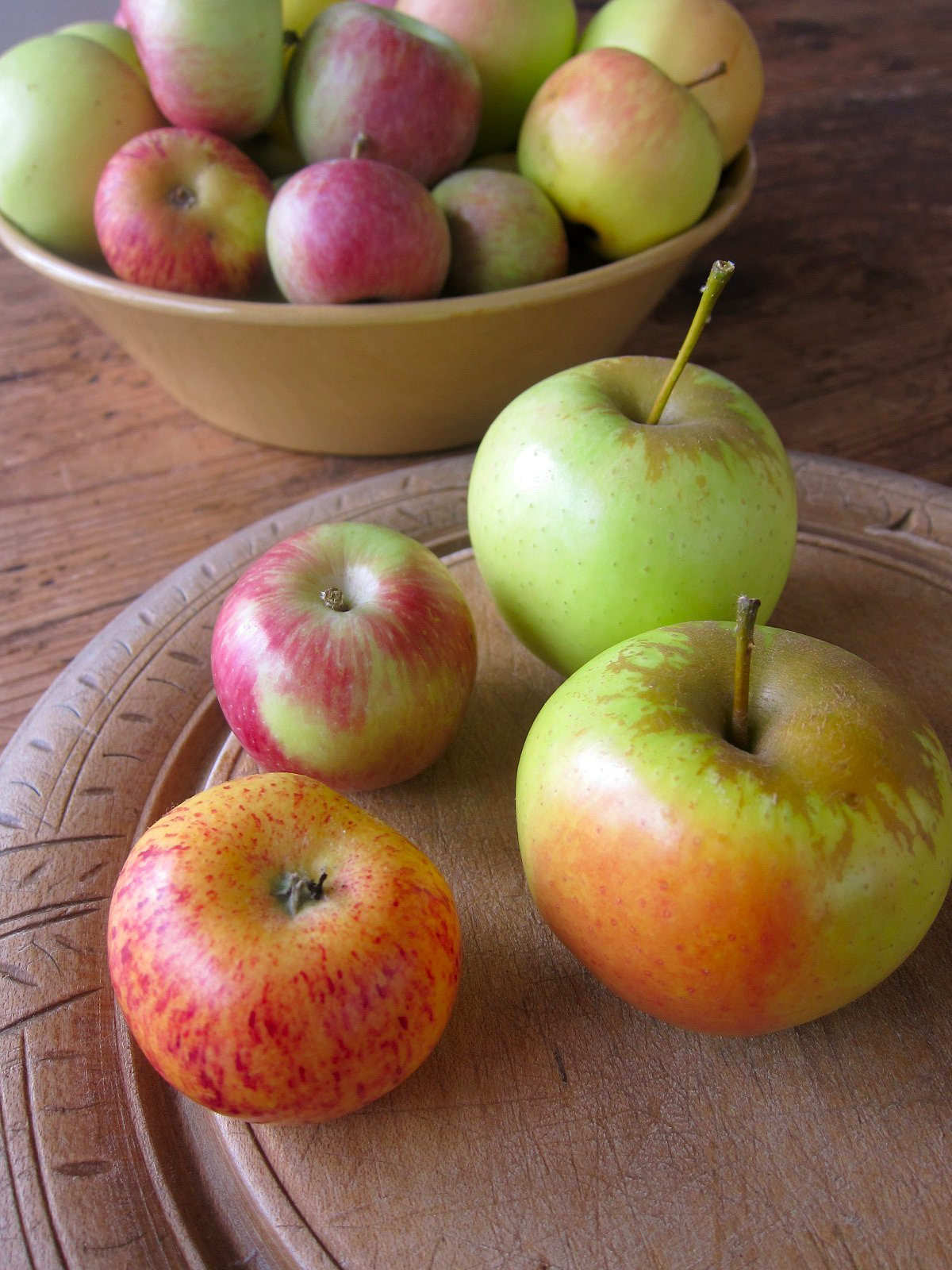 Chronica Domus: The Apple Harvest Is In!