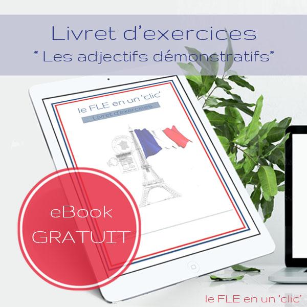 Cours et exercices sur les adjectifs démonstratifs en français