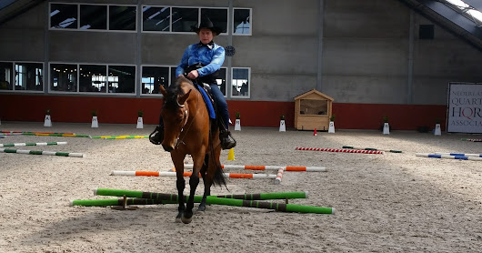 AQHA First Contest Someren