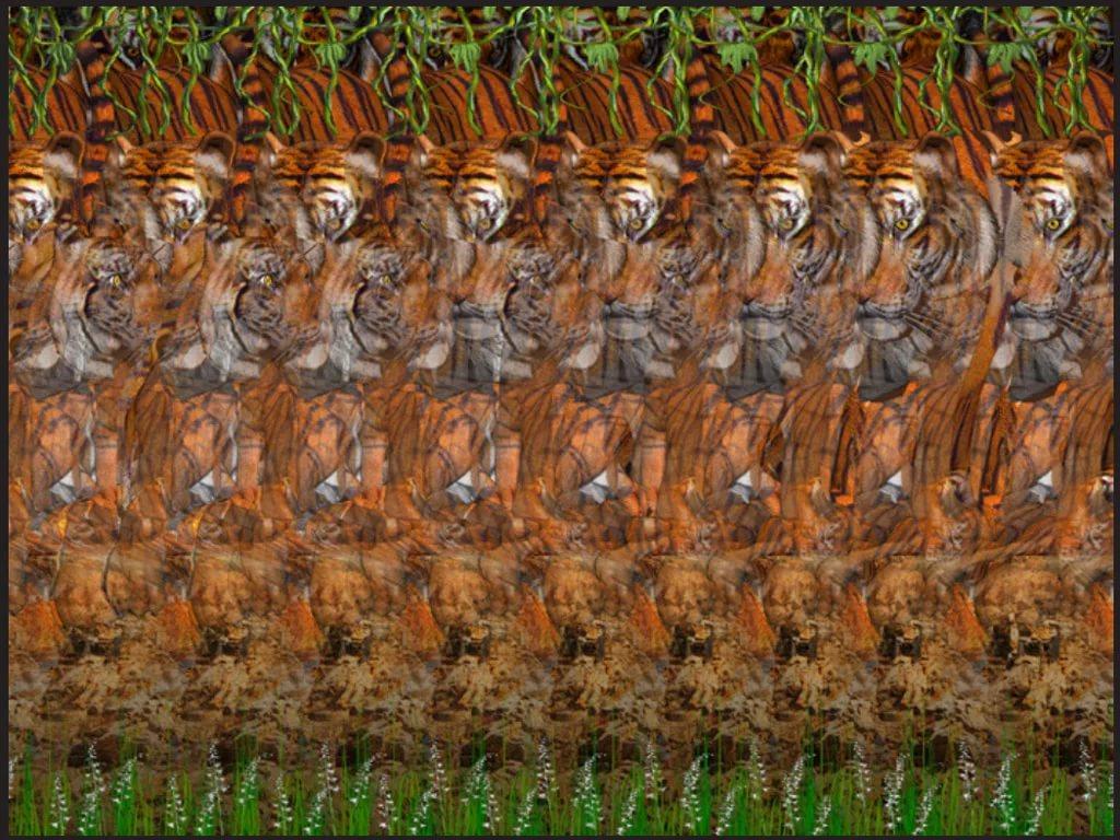 Картинки трехмерные иллюзии