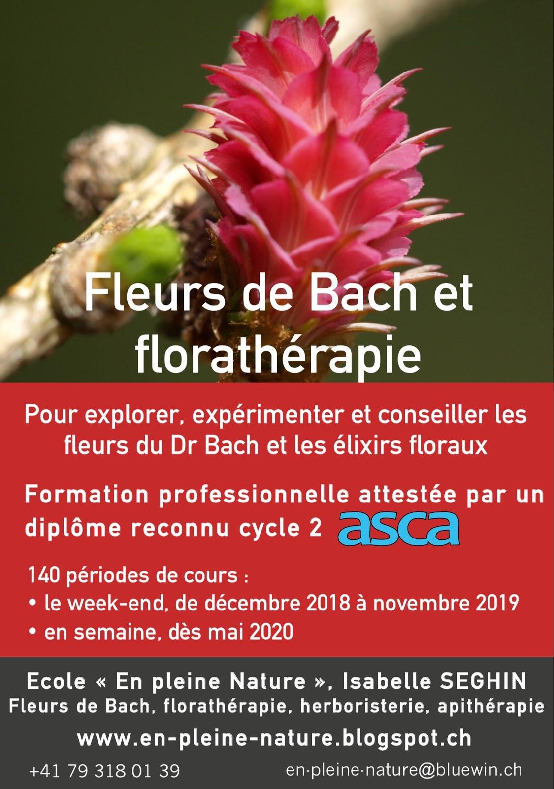 Ecole En Pleine Nature Fleurs De Bach Florathrapie Herboristerie Apithrapie