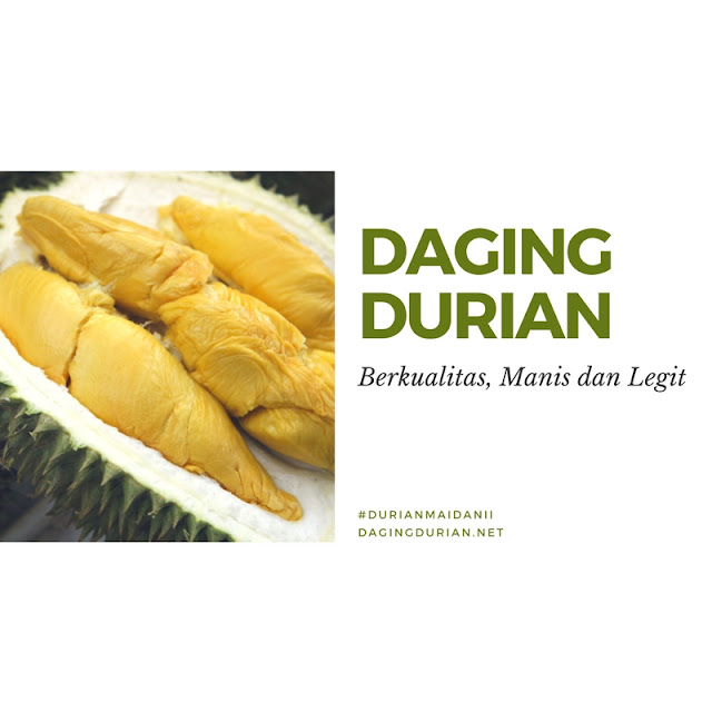 jual-daging-durian-medan-beku-di-rantau