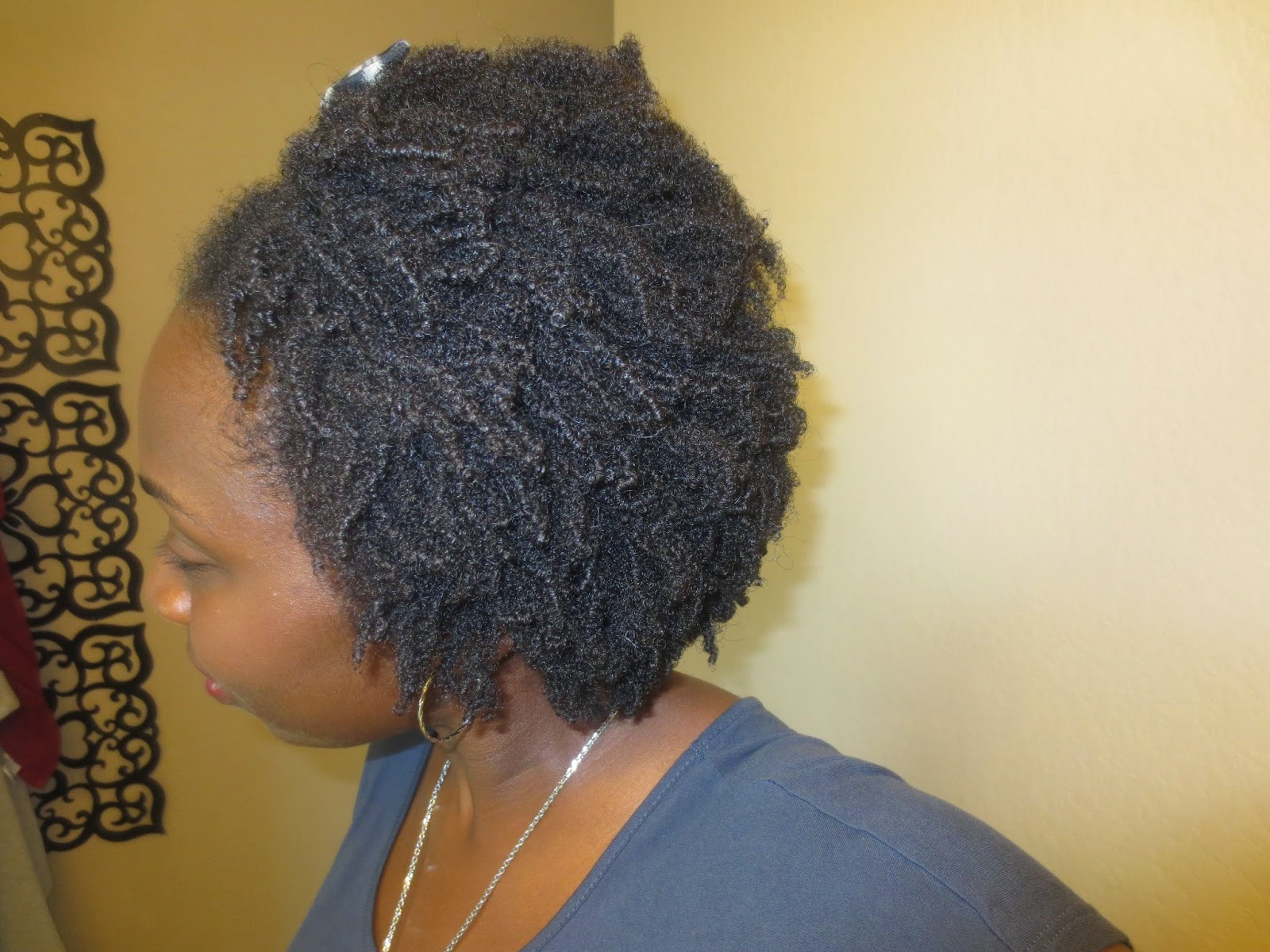 Wash and Go 4B 4C Natural Hair with Flaxseed Gel