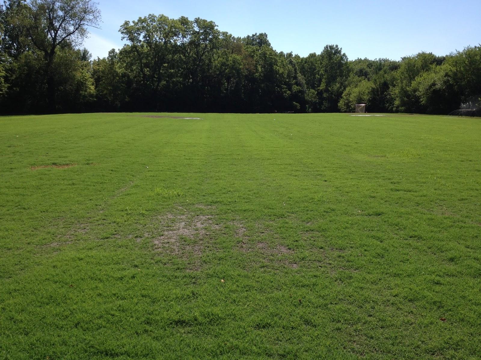 Smart Turf: Bermudagrass - Slow Germination in 2013