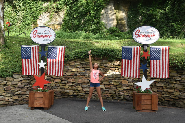 Dollywood is Fun for Everyone!  via  www.productreviewmom.com