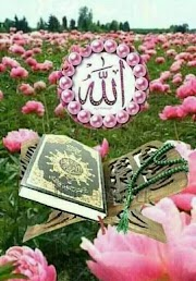 Islamic life: Mokhalifheen yaani Virodhiyo ka, challenge k Bad bhi Quran na Peesh kr Sakna