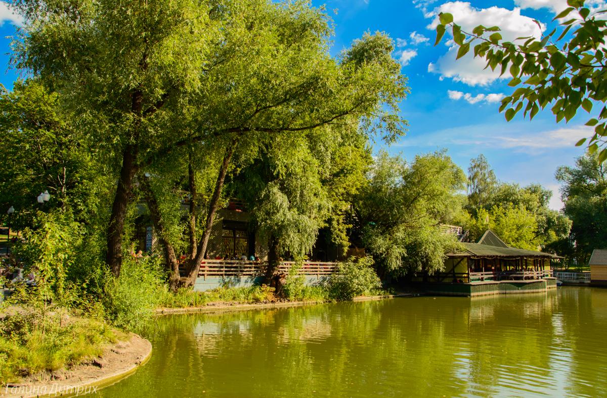 Парк Горького пруд фото